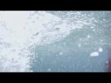 Психованная акула / Чудовище Акула / Psycho Shark (2009) DVDRip